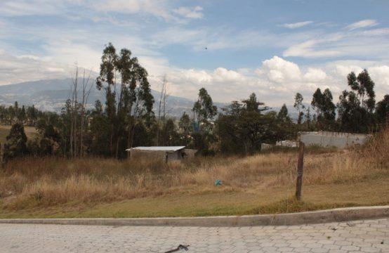 Terreno en venta Puembo 890m2