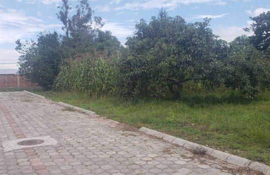 Terreno en venta Puembo