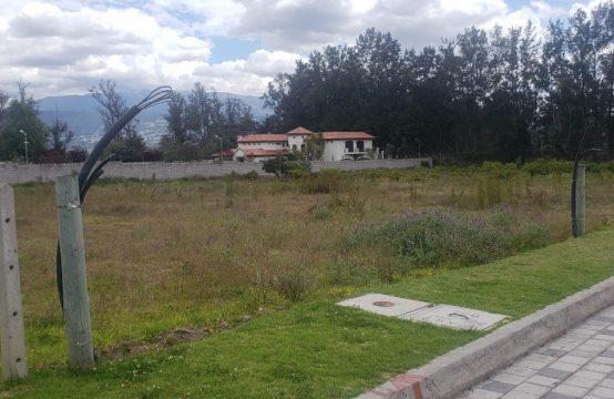 Terrenos en venta Puembo 2500 m2 Urbanización Privada