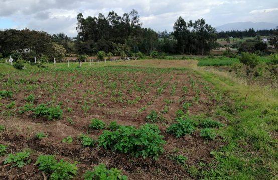Terreno en venta Yaruqui 2344m2 . $98.000