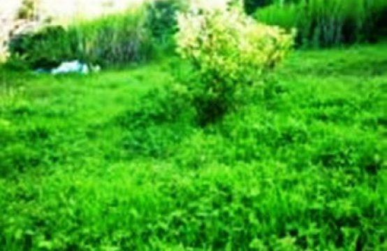 Terreno En Venta Tumbaco Sector Chiviquí 1000 M2