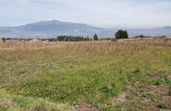 Terrenos de venta en Tababela a dos cuadras de la Av. Principal